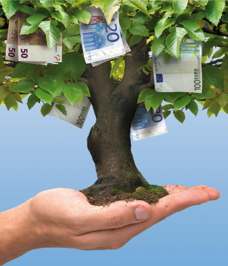 כסף לא צומח על העצים - זכאות לאזרחות פורטוגלית - עו