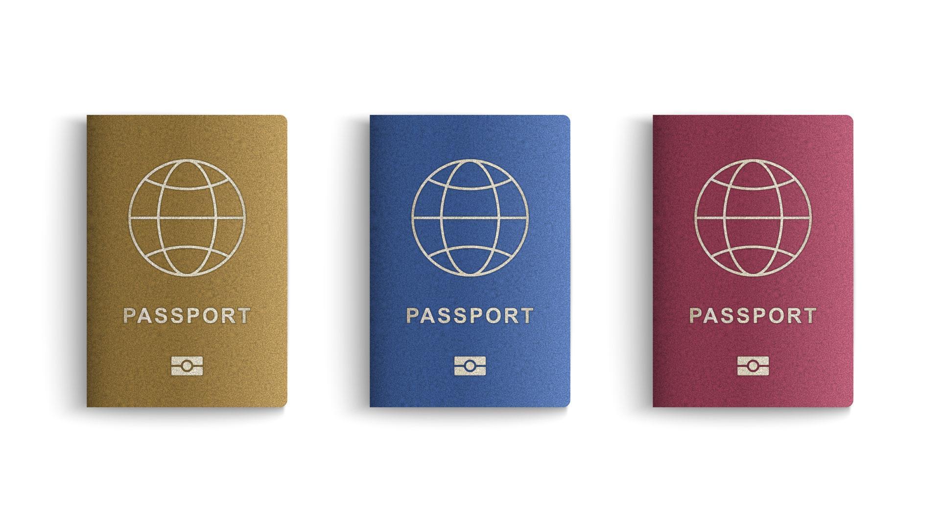 כמה ישראלים מחזיקים בדרכון זר